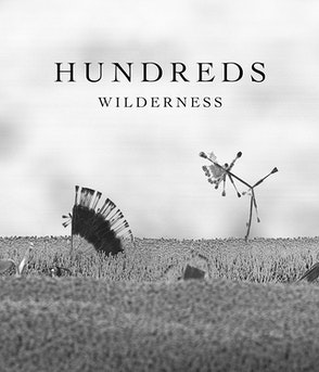 Hundreds - Wilderness (Deluxe CD)
